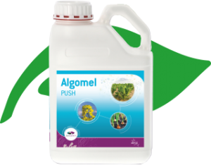 Biogazdálkodás Algomel biostimulátor